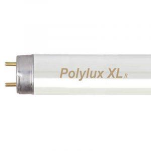 Fluorescent-T8-Polylux.jpg